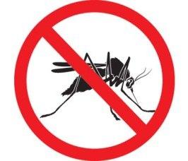 Противомоскитные сетки защищают от комаров